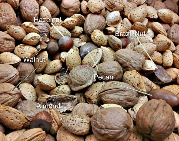 How to make your diet more Nut-ritious