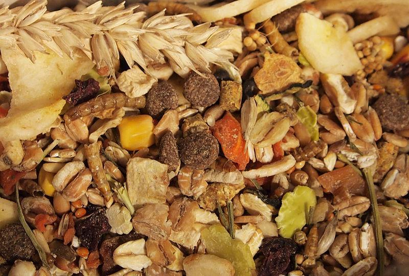 Are you eating enough fiber?