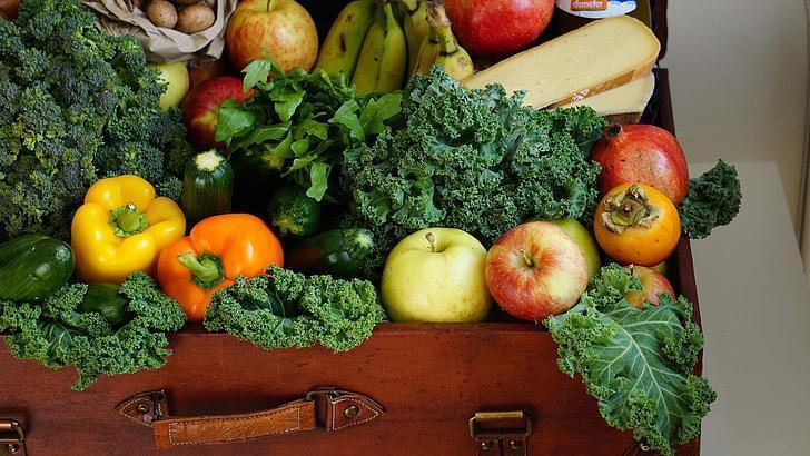 How to Keep your Digestive System Healthy?