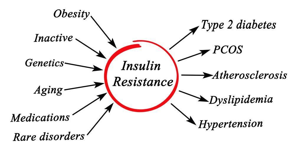 insulin resistance causes