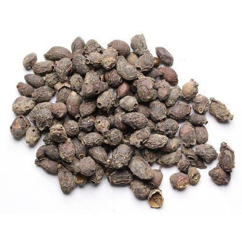 jamun seeds for high blood sugar