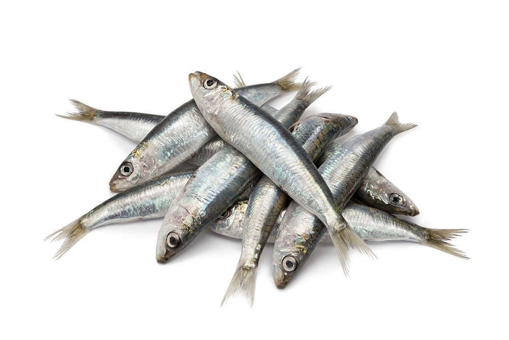 cheapest source of omega 3