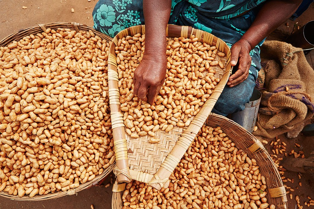 Peanuts and Diabetes: Does Eating Peanuts Increase Blood Sugar?
